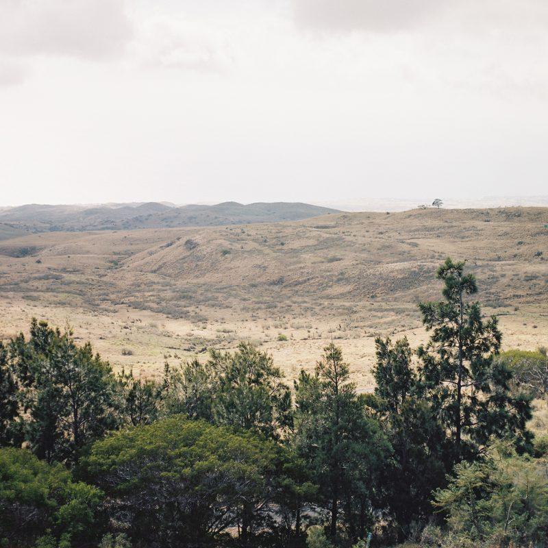 Big Island Landscape
